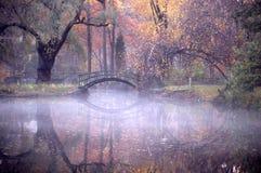 отражение осени Стоковое Изображение