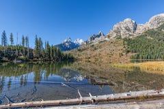 Отражение падения озера строк Стоковые Фото