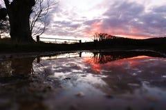 Отражение после шторма Imogen - захода солнца Стоковое Изображение RF