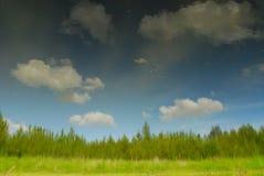 отражение пруда Стоковые Изображения