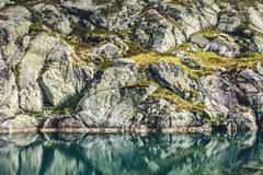 Отражение пруда Стоковое фото RF