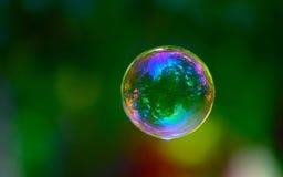 отражение пущи пузыря Стоковое Изображение RF