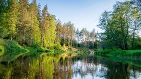 Отражение реки стоковое фото rf
