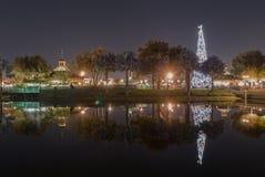 Отражение рождественской елки Стоковое Фото