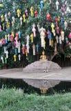 Отражение скульптуры Будды и защищая собаки под красочными laterns в воде Стоковые Изображения