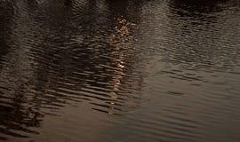 Отражение солнечного света в воде озера стоковая фотография rf