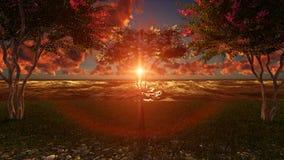Отражение сцены захода солнца природы в океане и красных облаках в небе Стоковое Изображение RF