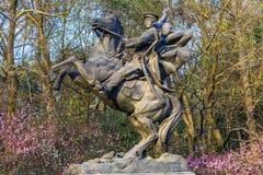 Отражение Ханчжоу Чжэцзян Китай озера стату лошади кадета западное Стоковое Изображение