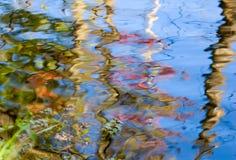 Отражение цвета стоковые изображения rf
