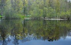 отражение Стоковые Фото