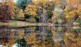 отражение 14 падений Стоковое Фото