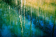 Отражение Стоковые Изображения RF