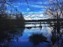 Отражение i к небу Стоковые Изображения RF