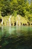 Отражение ` s водопада на озерах Plitvice паркует Стоковые Фотографии RF