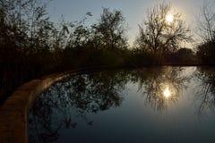 Отражение 2 Sunflare Стоковое Изображение