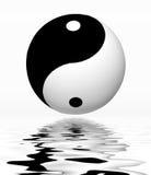 Отражение Yin Yang Стоковое Изображение