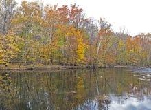 Отражения воды показывают вдоль реки в Smokies Стоковое Фото