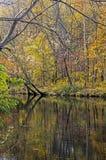 Отражения воды показывают вдоль реки в Smokies Стоковая Фотография