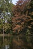 Отражения воды Стоковая Фотография