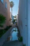 Отражения в воде переулка Стоковое Изображение RF