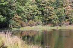 Отражения в озере Стоковые Изображения RF