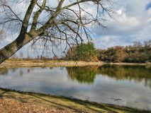 Отражения в озере Стоковое фото RF