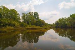 Отражения в реке Стоковые Фото