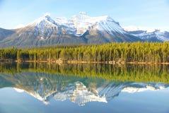 отражения горы озера пущи Стоковое Изображение