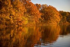 Отражения листвы осени на озере Стоковые Изображения