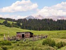 Отражения Колорадо cimarron Стоковое Фото