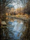 Отражения на неподвижном реке Стоковое Изображение