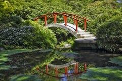 Отражения на садах Kabota Стоковое фото RF