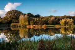 Отражения озера осен Стоковое Изображение RF