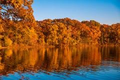 Отражения осени листвы в озере Стоковые Изображения RF