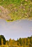 отражения осени Стоковое Изображение