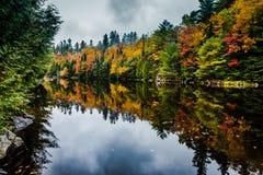 Отражения падения - Adirondacks NY стоковые фотографии rf