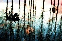 Отражения после потока стоковая фотография rf