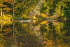 Отражения, река острова presque стоковые фотографии rf