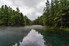 Отражения реки Стоковые Фото