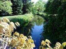 Отражения реки Стоковое Изображение RF