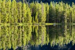 Отражения утра на озере строк стоковая фотография rf