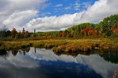 Отражения цвета осени на Algonquin, Канаде Стоковые Изображения