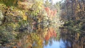 Отражения цвета падения в воде Стоковые Изображения RF