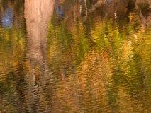Отражения цвета падения Стоковая Фотография RF