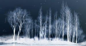 Отражения Стоковое Изображение RF