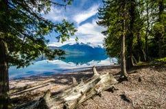 Отражения McDonald озера стоковое фото