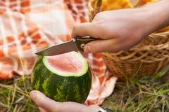 отрежьте арбуз armourer Пикник glade прикрынные стоковые изображения rf