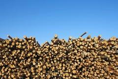 отрежьте древесину Стоковое Фото