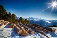 Отрежьте деревянные журналы перед панорамой снег-покрытых пиков Стоковое Изображение RF