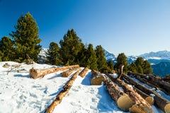 Отрежьте деревянные журналы перед панорамой снег-покрытых пиков Стоковое Изображение
